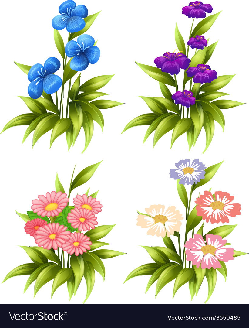 Four sets of blooming flowers vector | Price: 1 Credit (USD $1)