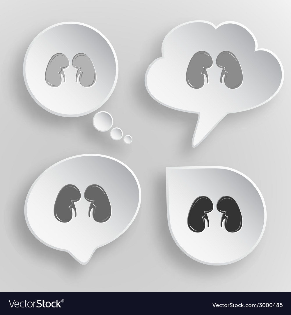 Kidneys white flat buttons on gray background vector | Price: 1 Credit (USD $1)