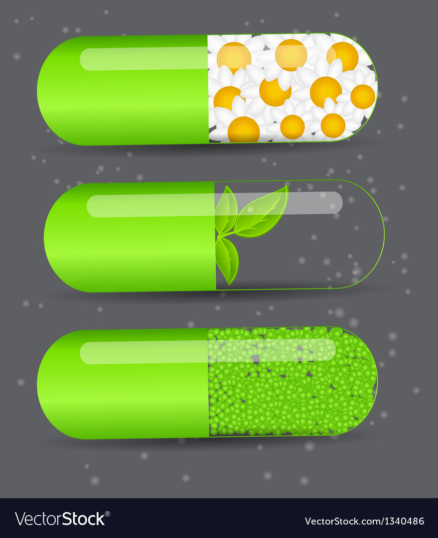 Herbal pill iconenvironment background vector | Price: 1 Credit (USD $1)