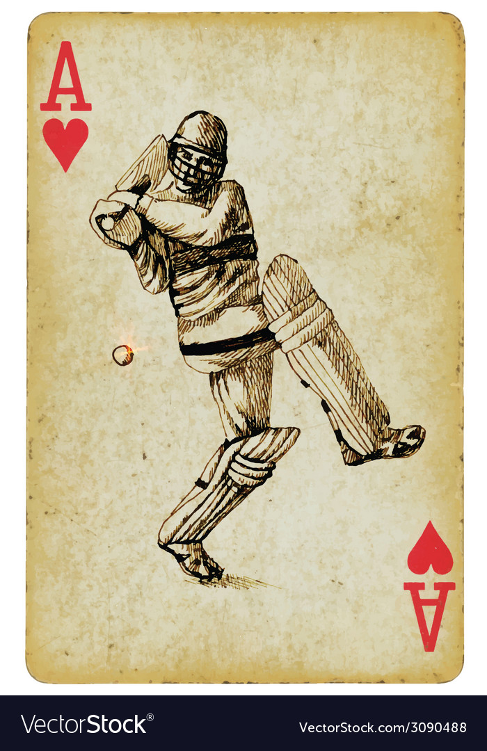 Cricket vector | Price: 1 Credit (USD $1)