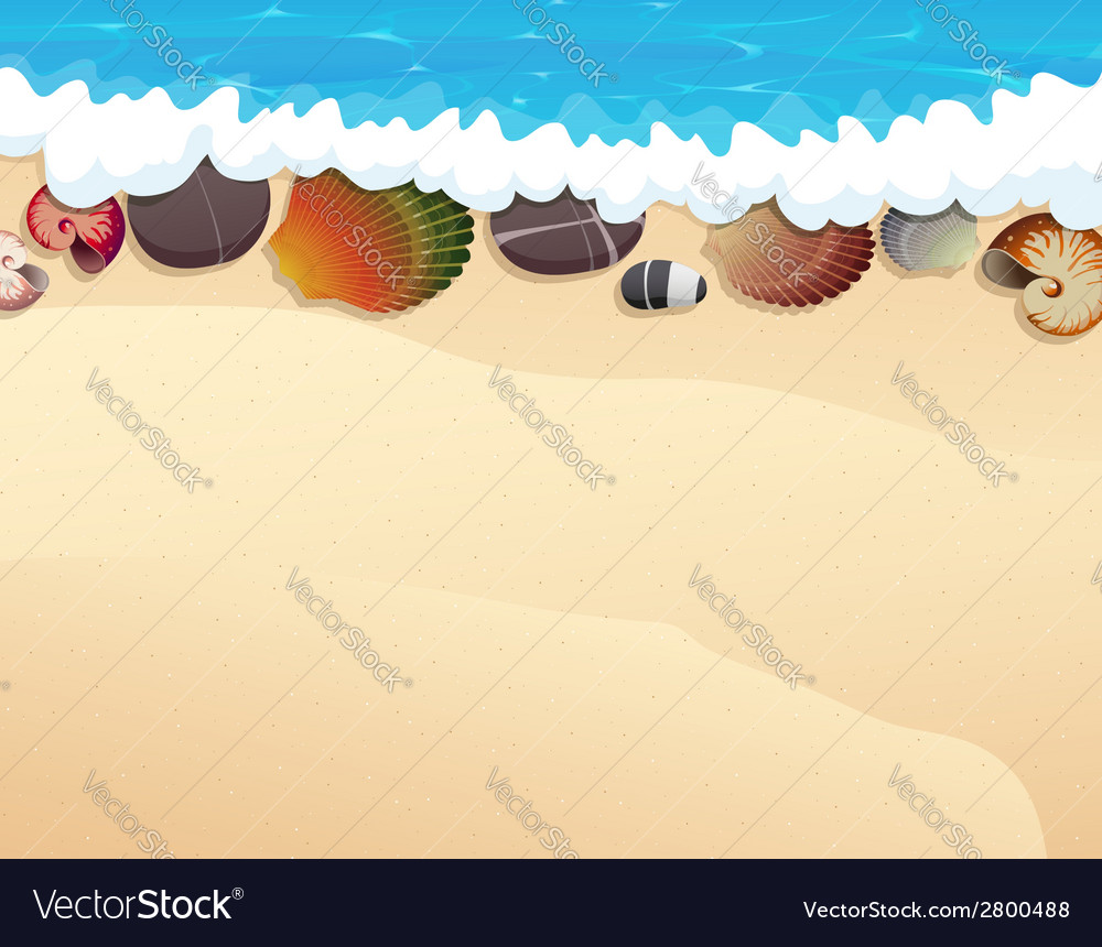 Pebble and seashells on the sand vector | Price: 1 Credit (USD $1)