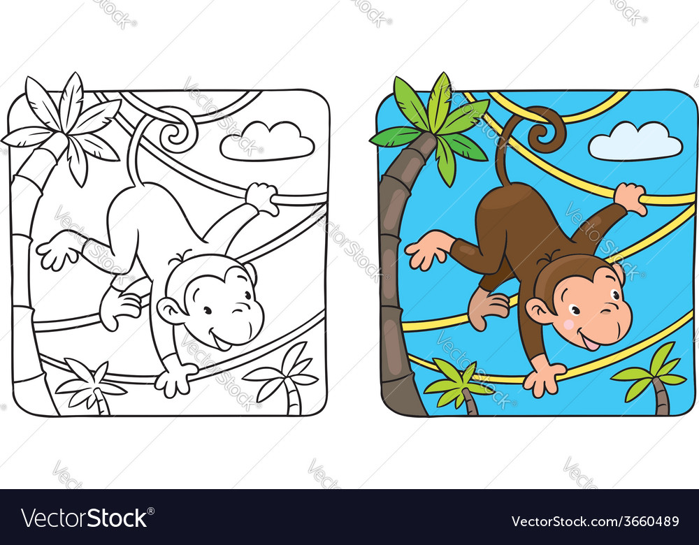 Little funny monkey on lians vector | Price: 1 Credit (USD $1)