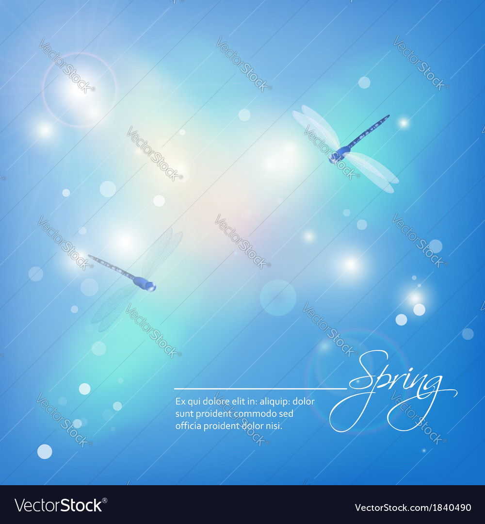 Spring abstract blue background with dragonflies vector | Price: 1 Credit (USD $1)