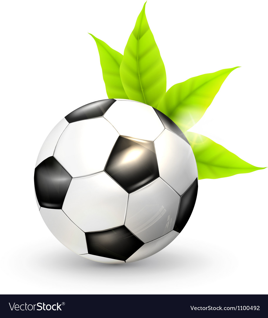 Soccer ball and green leaves vector | Price: 1 Credit (USD $1)