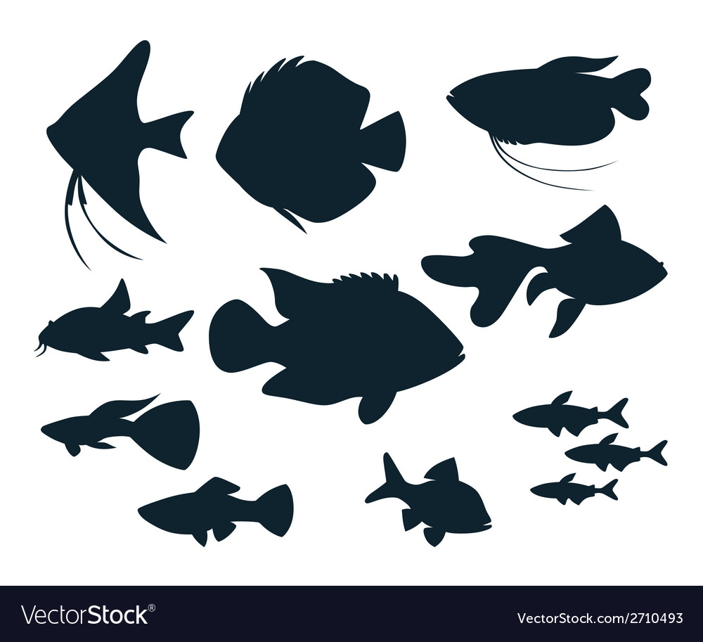 Aquarium fish silhouettes vector | Price: 1 Credit (USD $1)