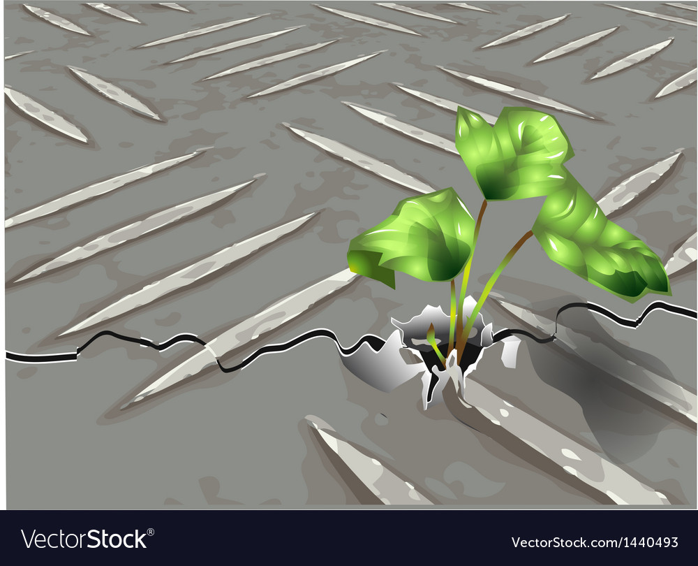 Plant grows through the metal vector | Price: 1 Credit (USD $1)