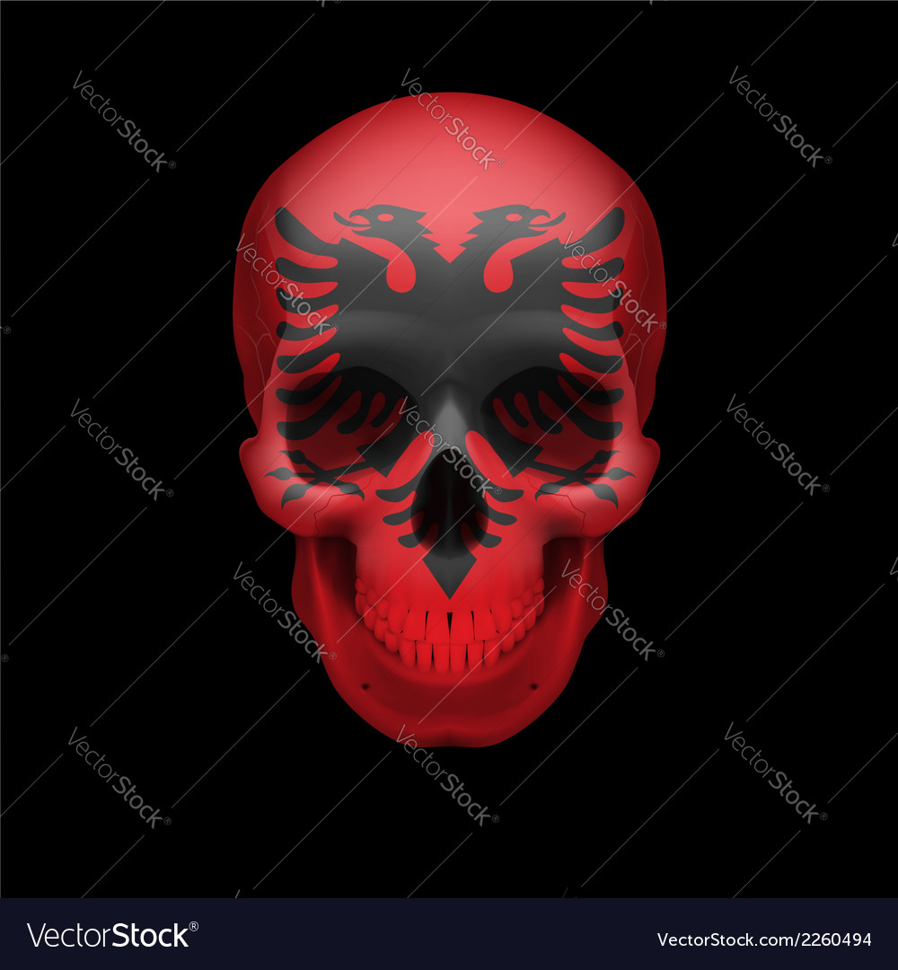 Albanian flag skull vector | Price: 1 Credit (USD $1)