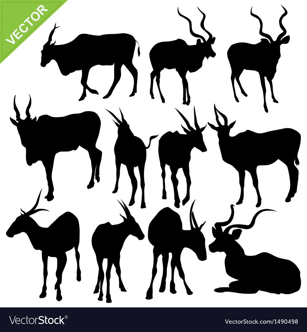 Bull silhouettes vector | Price: 1 Credit (USD $1)