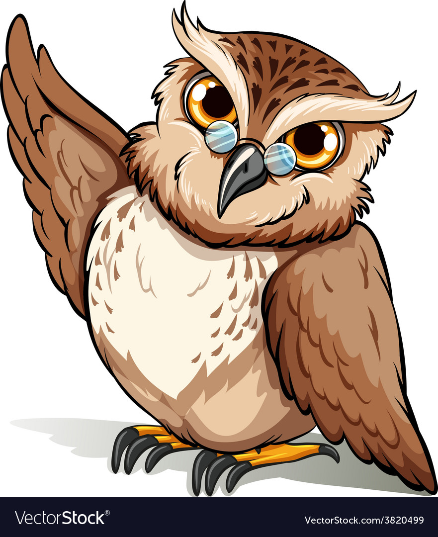 A wise owl vector | Price: 1 Credit (USD $1)