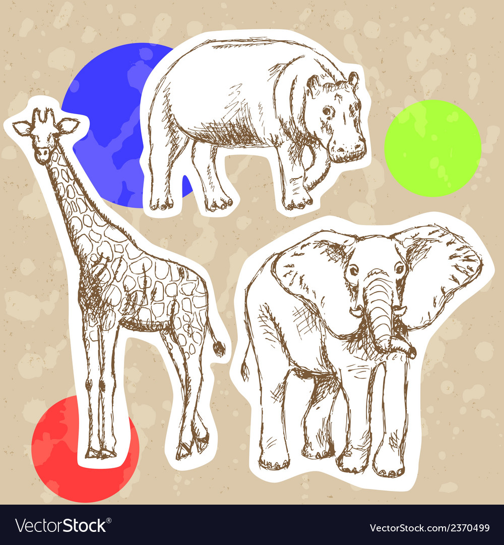 Hippo elephant geraffe vector | Price: 1 Credit (USD $1)
