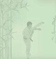 The the man is engaged in karate on a green vector