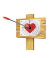 Heart target vector