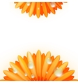 Gerber petals with water drops plus eps10 vector