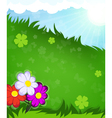 Flowers in the meadow vector