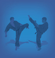 Two men are engaged in karate on a blue background vector