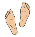 Footprints vector