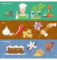 Spices icons banner vector
