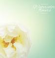 Pastel rose vector