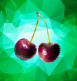 Purple cherry polygon vector