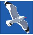 Gull vector