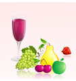Glass wine fruit vector