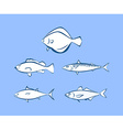 Icons of sea fish vector