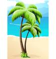 Palm trees on a beach vector