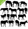 Horse and zebra silhouettes vector