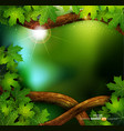 Background forest with trees vector