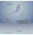 Diver among sharks vector