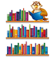 An owl above the wooden bookshelves with books vector