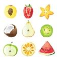 Fruit pieces vector