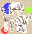 Hippo elephant geraffe vector