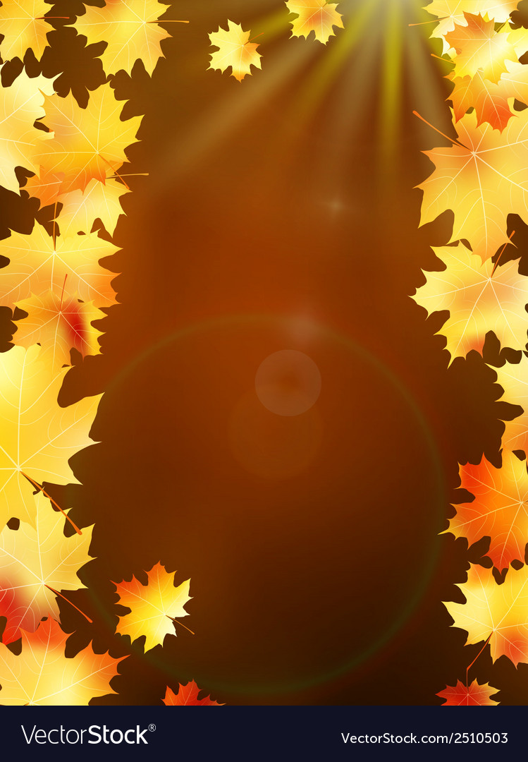 Autumn leaves on colorful plus eps10 vector | Price: 1 Credit (USD $1)