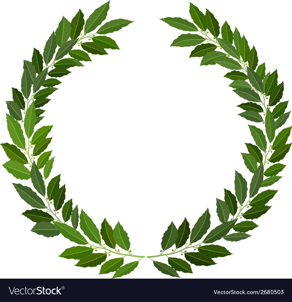 Laurel wreath on white background vector | Price: 1 Credit (USD $1)