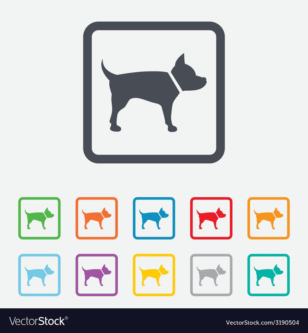 Dog sign icon pets symbol vector | Price: 1 Credit (USD $1)