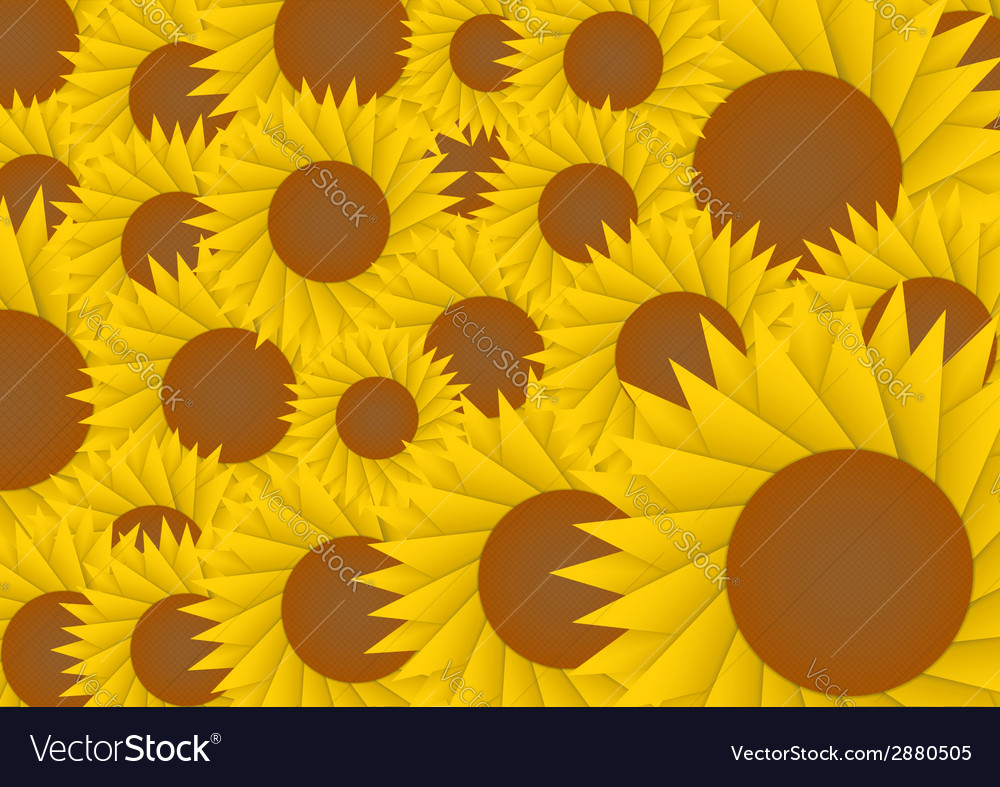 Sun flower abstract background vector   Price: 1 Credit (USD $1)