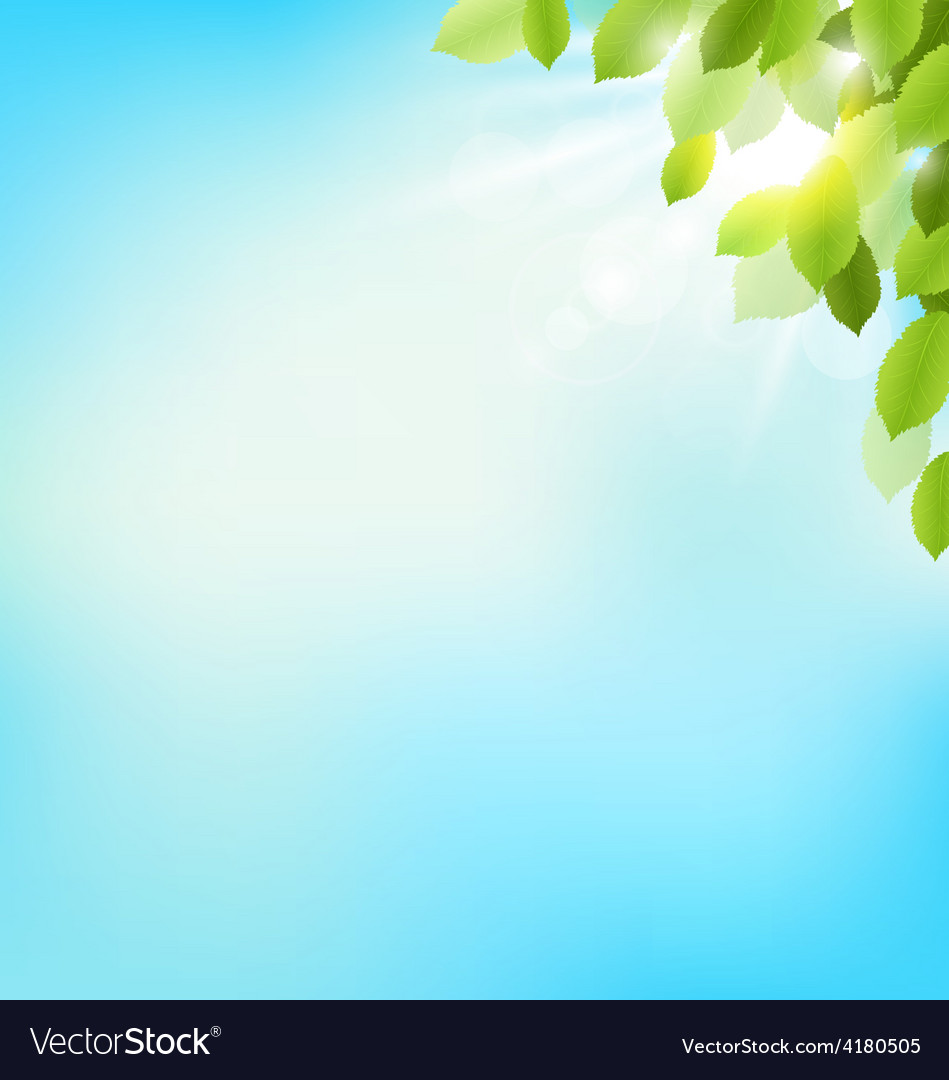 Tree foliage with sunlight on sky floral nature vector | Price: 1 Credit (USD $1)