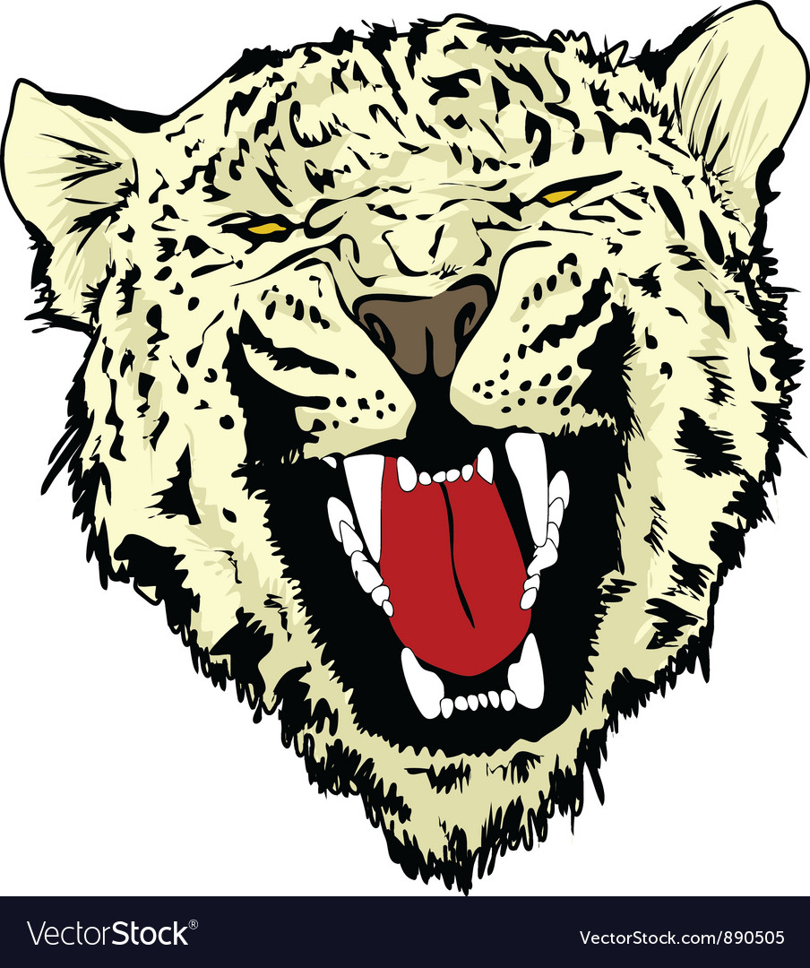 Wild cat vector | Price: 1 Credit (USD $1)