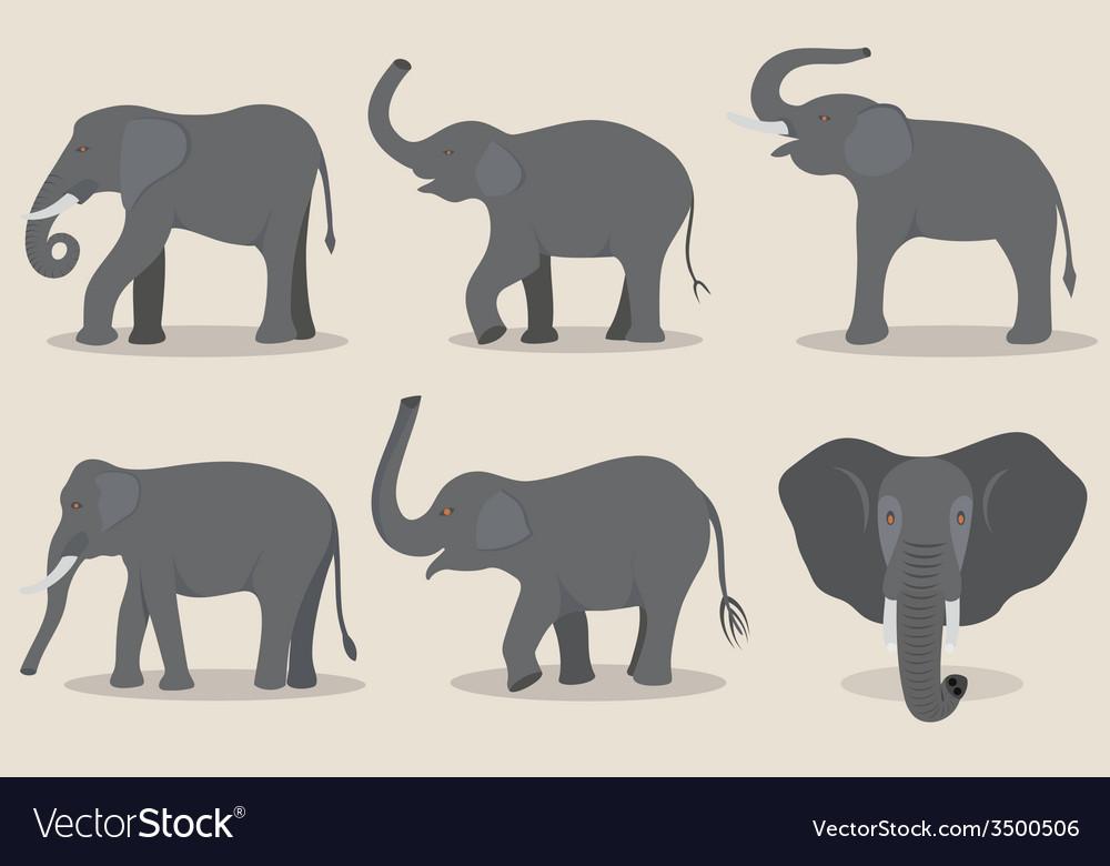 Gray elephant set vector | Price: 1 Credit (USD $1)
