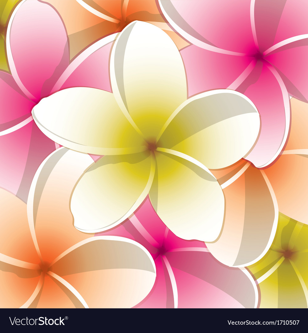 All purpose bright frangipani card in format vector | Price: 1 Credit (USD $1)