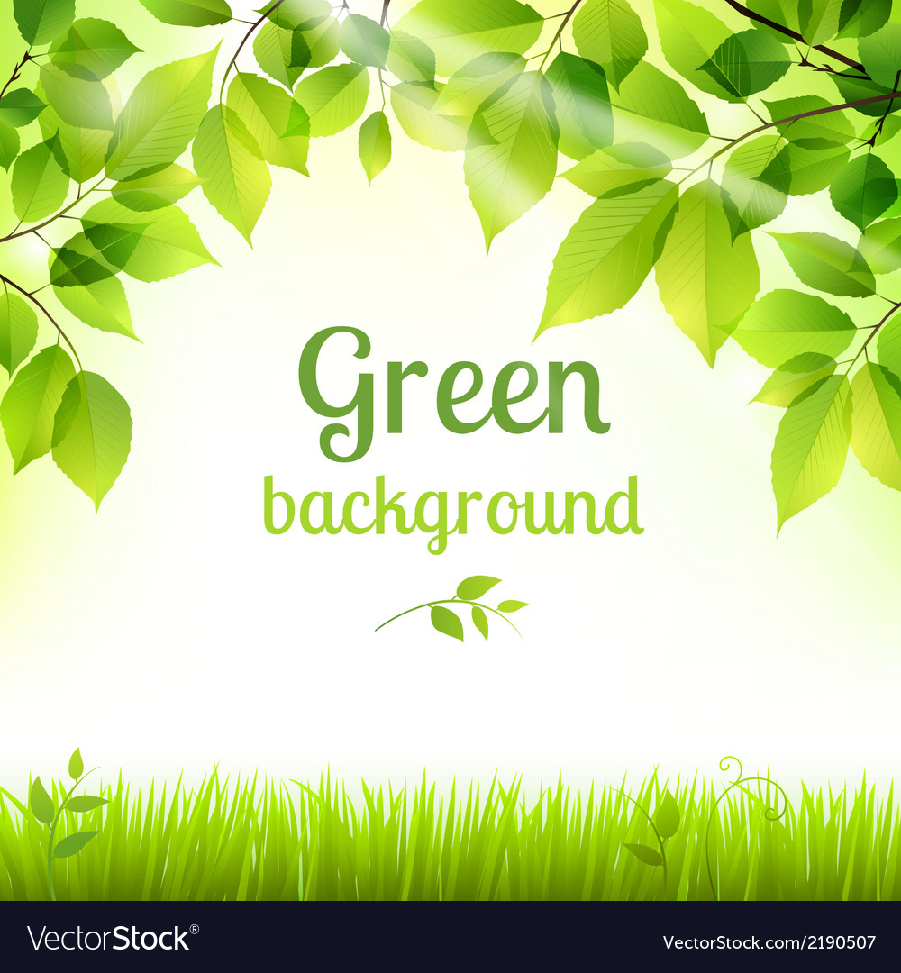 Natural green fresh foliage background vector | Price: 1 Credit (USD $1)