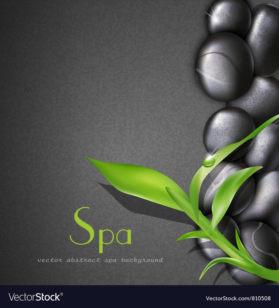 Background of a spa with stones vector | Price: 3 Credit (USD $3)