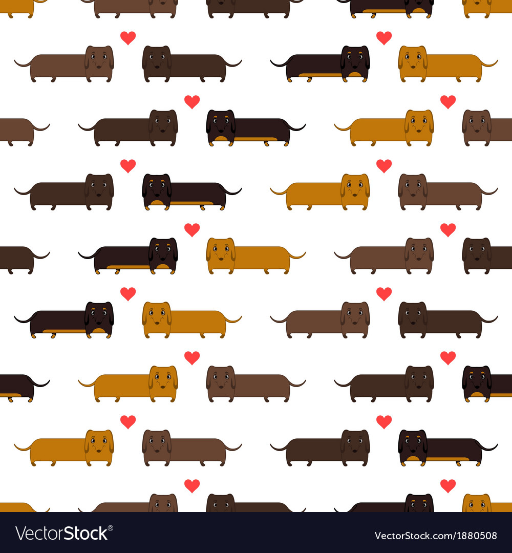 Dachshunds vector | Price: 1 Credit (USD $1)