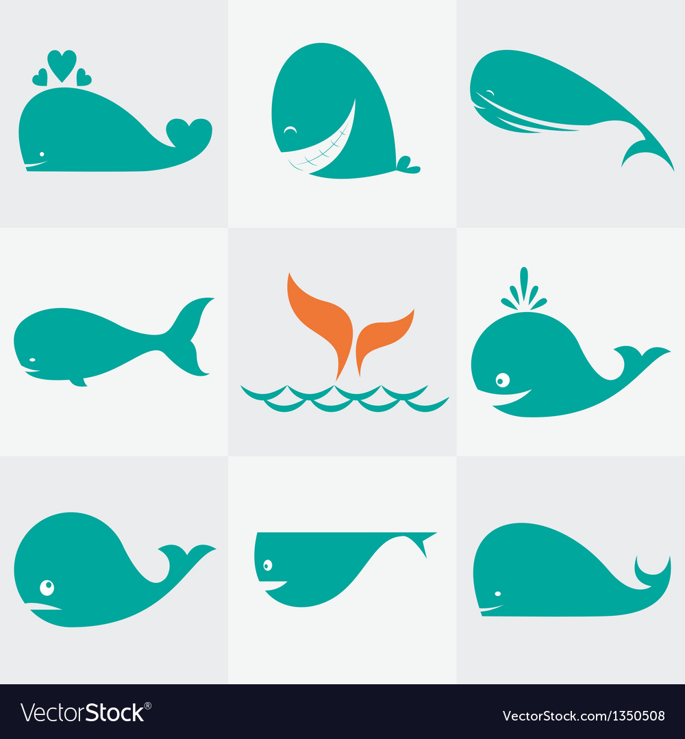 Whale vector | Price: 1 Credit (USD $1)