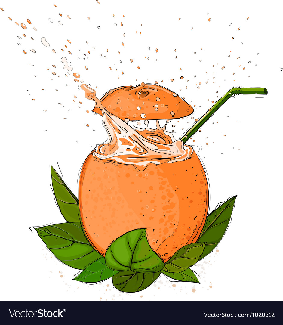 Orange juice splash vector | Price: 1 Credit (USD $1)