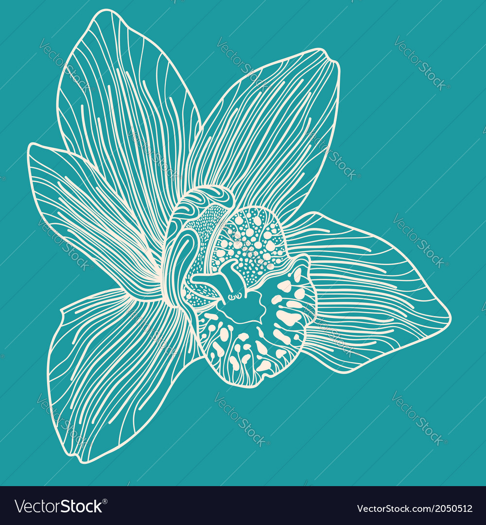 White orchid on blue background vector | Price: 1 Credit (USD $1)