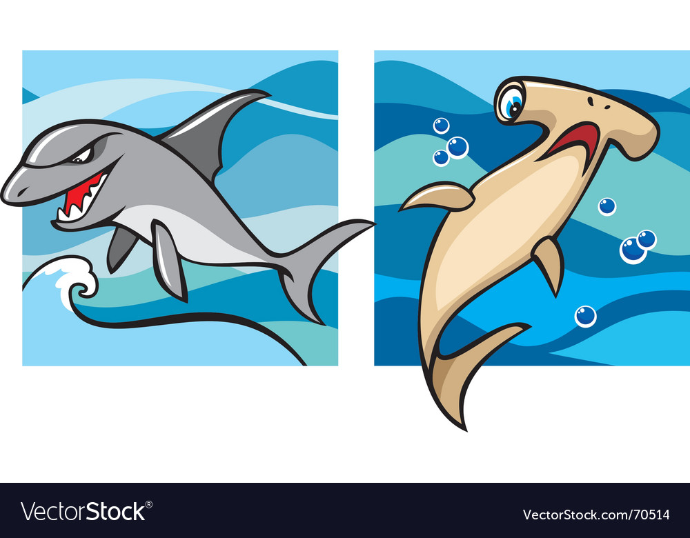 Marine life sharks vector | Price: 1 Credit (USD $1)