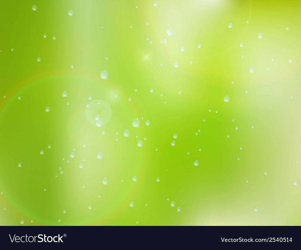 Natural water drops on glass plus eps10 vector | Price: 1 Credit (USD $1)