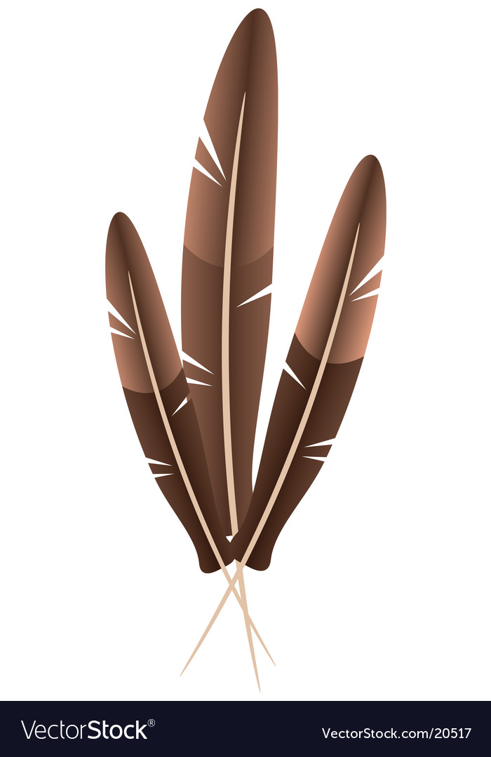 Three feather vector | Price: 1 Credit (USD $1)